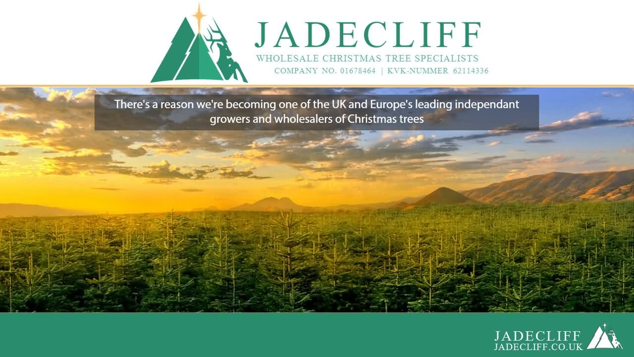 Jadecliff presentation slide 1