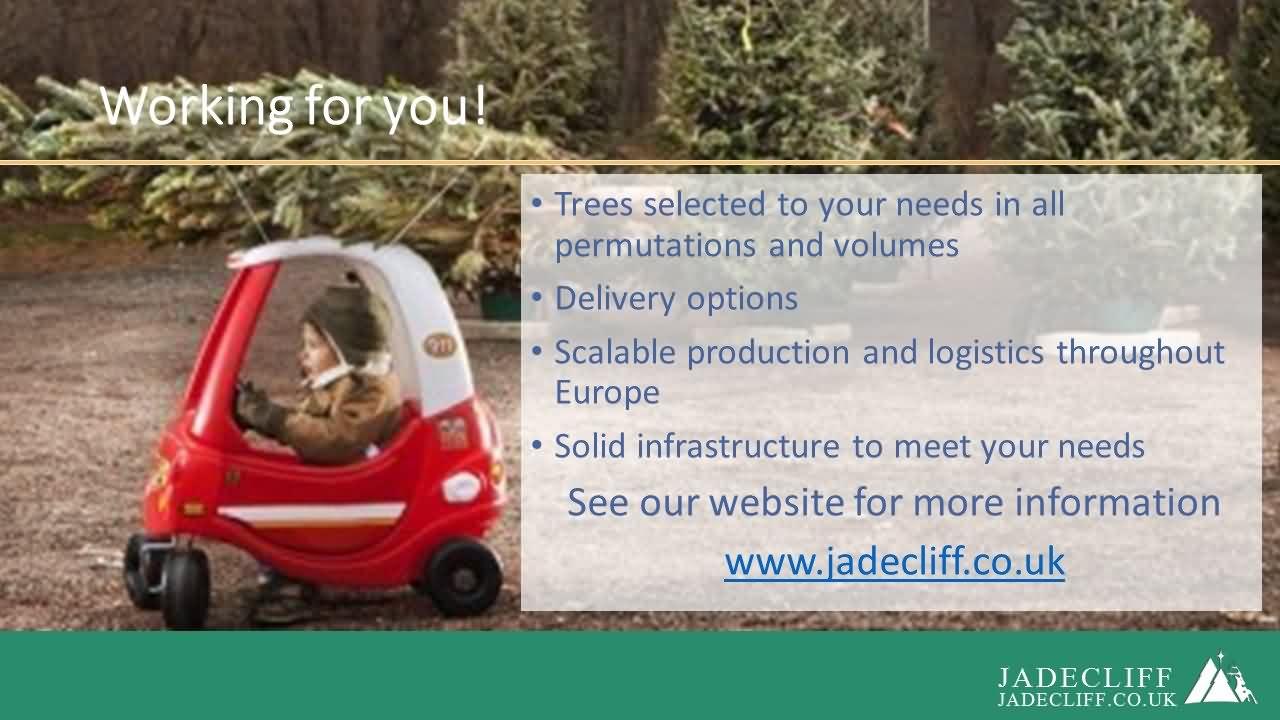 Jadecliff presentation slide 12