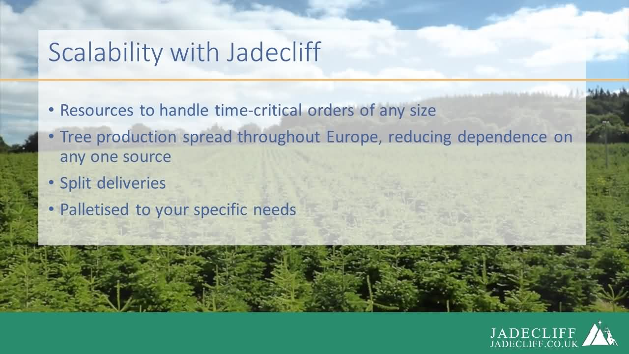 Jadecliff presentation slide 7