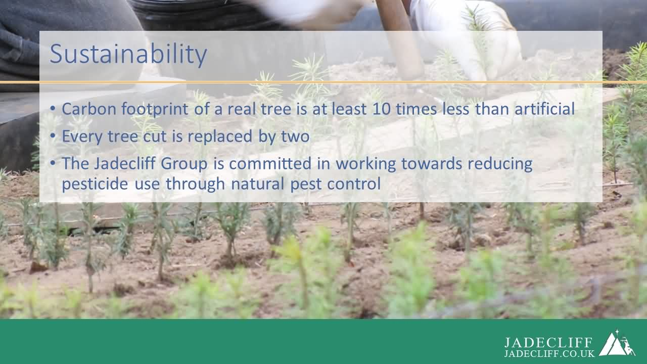 Jadecliff presentation slide 9
